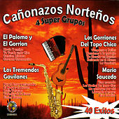 40 Exitos Canonazos Nortenos by Various Artists