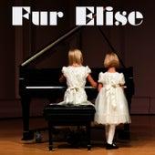 Fur Elise (Beethoven Salute) by Ludwig van Beethoven