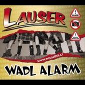 Wadl Alarm - Single 2011 by Die Lauser