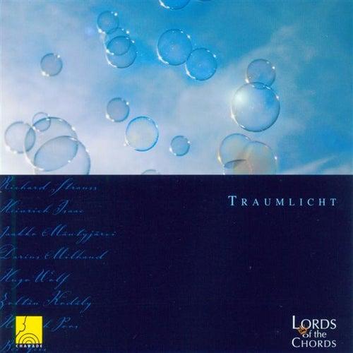 Traumlicht by Studio conductor