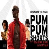 Pum Pum Shorts (feat. Gyptian & Teairra Mari) - Single by Mr. Vegas