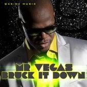 Bruck It Down - Single by Mr. Vegas