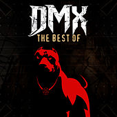 Very Best Of von DMX