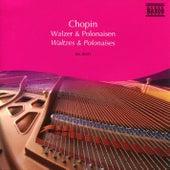 Chopin: Waltzes / Polonaises by Idil Biret