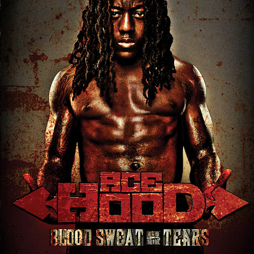 Blood Sweat & Tears by Ace Hood