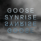 Synrise EP by Goose (3)