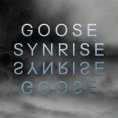Synrise EP von Goose (3)