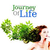 Journey Of Life by Erik Ekholm