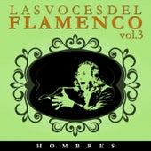 Las Voces del Flamenco - Hombres  Vol.3 (Edición Remasterizada) by Various Artists
