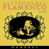 Las Voces del Flamenco - Hombres  Vol.6 (Edición Remasterizada) by Various Artists
