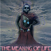 The Meaning Of Life by Various Artists