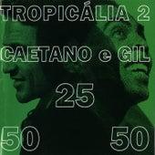 Tropicalia 2 by Caetano Veloso