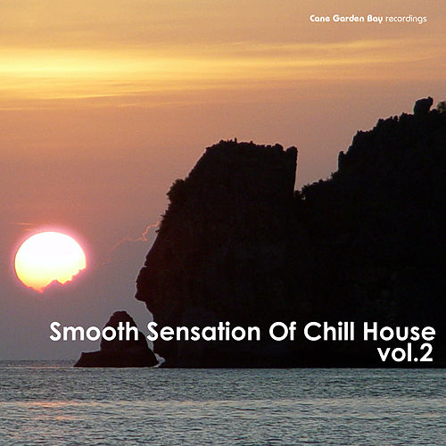 Smooth Sensation Of Chill House Vol.2 by Various Artists