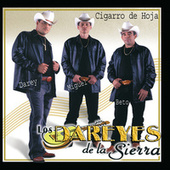 Cigarro De Hoja by Los Dareyes De La Sierra
