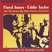 Masters Of Modern Blues by Floyd Jones