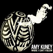 Where I Can't Follow - Single by Amy Kuney