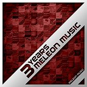 3 Years Meleon Music (Compilation) by Various Artists