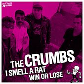 The Crumbs & the Ridicules - Split Ep by Various Artists