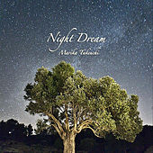 Night Dream by Marika Takeuchi