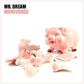 Moneybags - Single by Mr. Dream