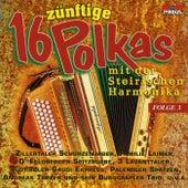 16 zünftige Polkas mit der Steirischen Harmonika / Folge 3 by Various Artists