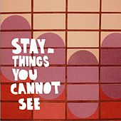 Things You Cannot See by Stay