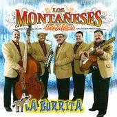 La Burrita by Los Montaneses Del Alamo