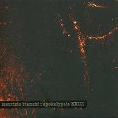 Apokalypsis XXIII by Maurizio Bianchi
