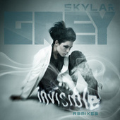 Invisible Remixes by Skylar Grey