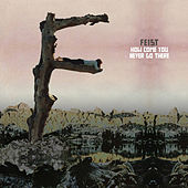 How Come You Never Go There by Feist