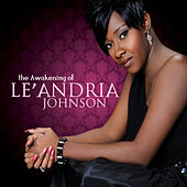 The Awakening of Le'Andria Johnson by Le'Andria Johnson