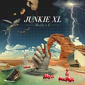 Molly's E by Junkie XL