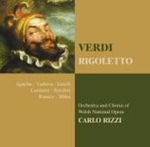 Verdi : Rigoletto by Carlo Rizzi