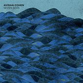 Seven Seas by Avishai Cohen (bass)