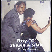 Slippin & Slidin by Roy C