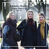 Brahms: Piano Trios by The Eskar Trio