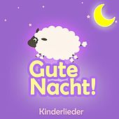 Gute Nacht (Schlaflieder, Babylieder Und Kinder Lieder Zum Mitsingen Und Einschlafen Als Kindermusik Auf Dem Klavier Und Piano) by Kinder Lieder