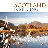 Scotland Is Singing by Various Artists