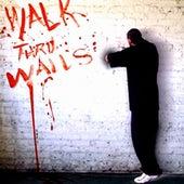 Walk Thru Walls by Qwazaar