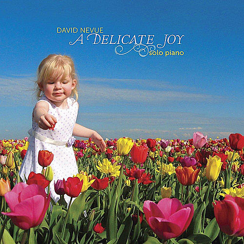 A Delicate Joy von David Nevue