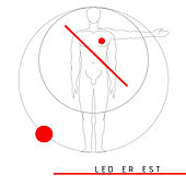 White Towel Ants by Led Er Est