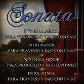 16 Sonatas De Antonio Vivaldi. Música Clásica De Violoncello, Bajo Continuo Y Traverso by Antonio Vivaldi