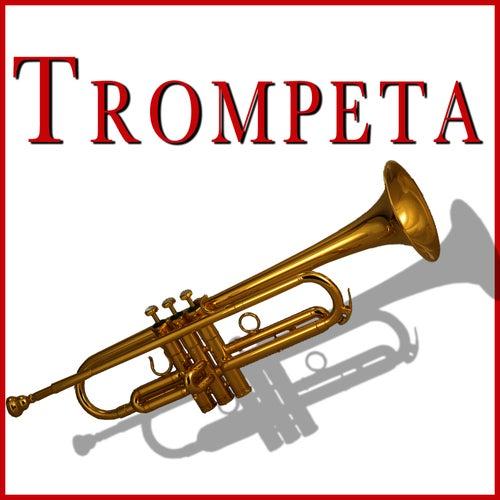 Trompeta Yamaha Precio