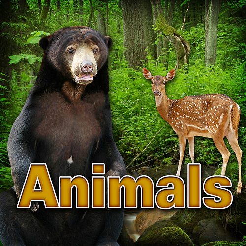 Animals by Dr. Sound Effects SPAM