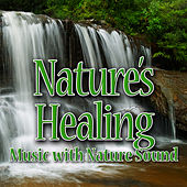 Nature's Healing (Music with Nature Sound) by Sounds of Nature White Noise for Mindfulness Meditation and Relaxation BLOCKED