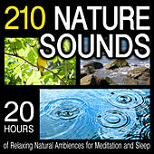 210 Nature Sounds - 20 Hours Of Relaxing Natural Ambiences for Meditation And Sleep by Dr. Sound Effects SPAM