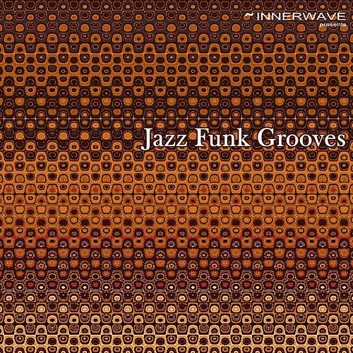 Jazz Funk Grooves by Various Artists