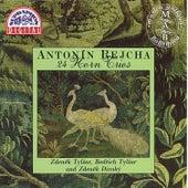 Rejcha: Trios for French Horns by Zdenek Tylsar