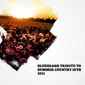 Bluegrass Tribute to Summer Country Hits 2011 by Pickin' On