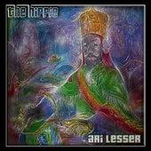 The Hippie by Ari Lesser
